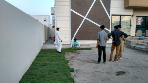fine dhaka grass in Pakistan